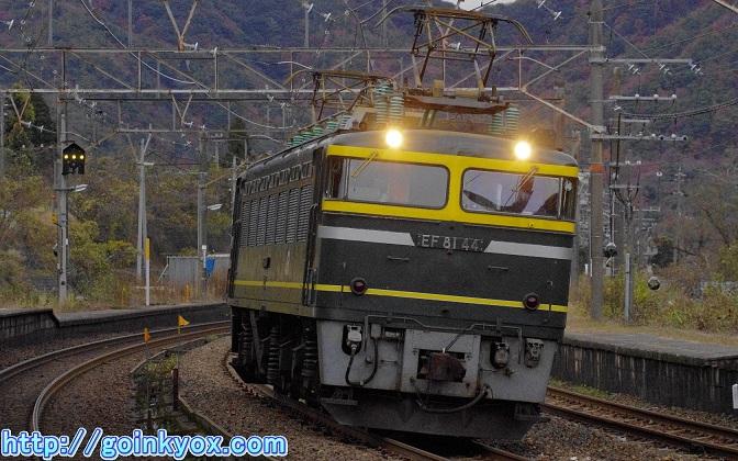 20111203EF8144Shinhikida1L.JPG