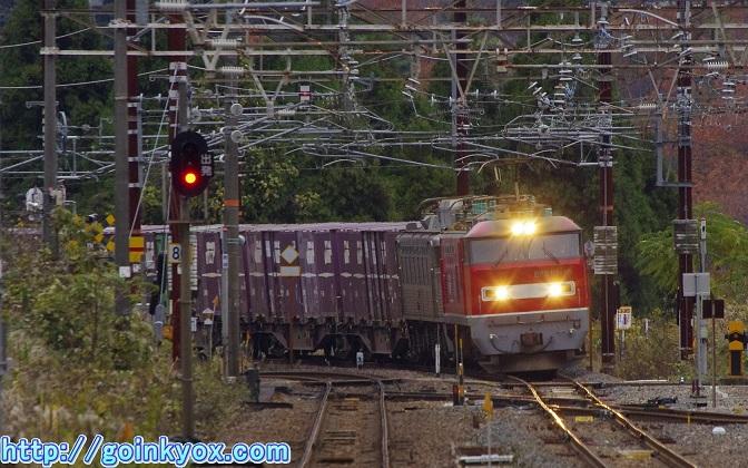 20111203GingamaMudoShinhikida1L.JPG