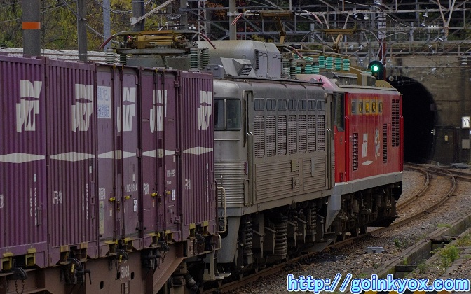 20111203GingamaMudoShinhikida6L.JPG