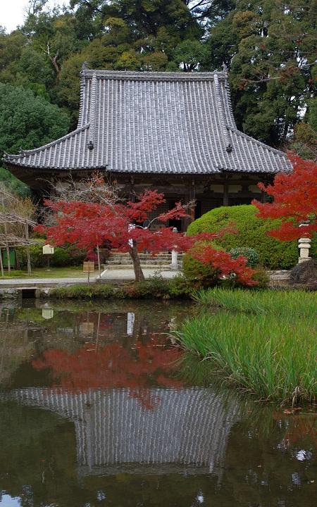 長岳寺 本堂を池越しで