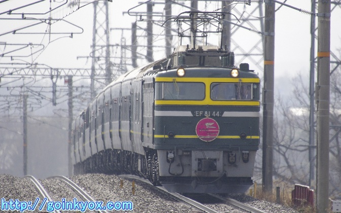 TEKitakomatu20110311A.JPG