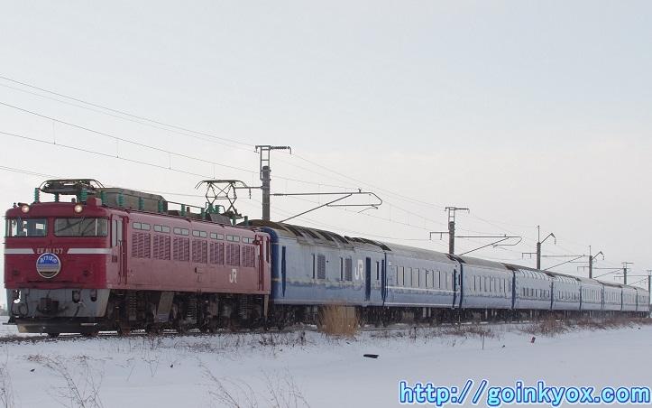 20131231NamiokaAkebono2.JPG
