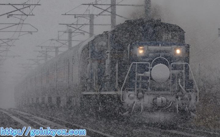 20140101SyadaiCasiopeia1.JPG